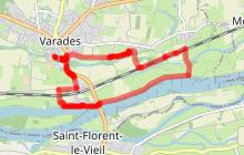 Belle randonnée autour de la Madeleine et sur les bords de Loire - VARADES