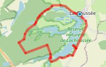 Balade au Naturel - Étang de Lachaussée