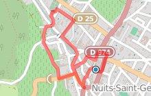 Les essentiels de la ville de Nuits-Saint-Georges
