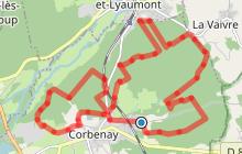 """Circuit pédestre """"Les blanches carrières"""" - Le Val de Semouse - Vosges du sud"""