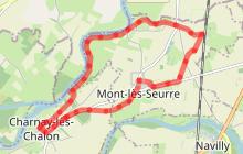 Rive de Saône