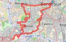 Les vignes en ville Bordeaux-M�tropole