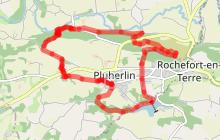Circuit des Palis, Pluherlin