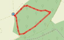 Balade au naturel - Vent des Forêts (court-circuit)