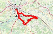 Routes des vins : Château de Brissac et vignobles de l'Aubance