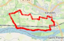 Au détour des chemins de la Grande Prée et des bords de Loire - Varades