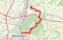 Stevenson de Grez-sur-Loing à Châtillon-sur-Loire | Etape 4