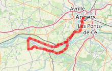 Routes des vins : Loire sauvage et corniche angevine
