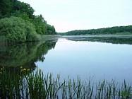 Office de tourisme du lac du der giffaumont champaubert - Office tourisme lac du der ...