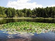 Balade autour du Lac de Crenu