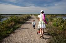 Randonnée pédestre sur le Domaine de Certes à Audenge sur le Bassin d'Arcachon '