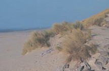 Sentier des dunes