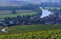 Entre Marne et vignes