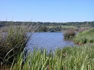 randonnée du parc des étangs - Boucle de Toutainville, 27500