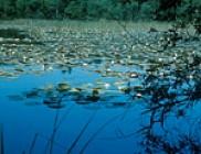 Circuit de Malru à Maurupt : histoires d'eau