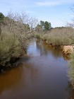 Le canal des étangs