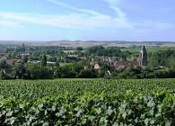 Terroirs et vignes en Val de Noxe