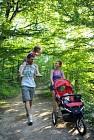 Sentier de la Forêt de Seillon