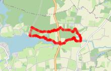 Circuit de la Forêt de Vioreau - JOUE SUR ERDRE