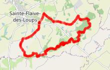 Sentier de l'Ormeau - SAINTE FLAIVE DES LOUPS (85)