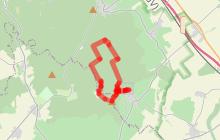 PR 48 Circuit de la Forêt Royale