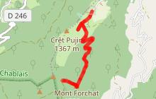 """Randonnée """"le Mont Forchat"""" depuis Très-le-Mont"""