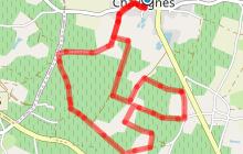 CHAVAGNES LES EAUX - Circuit des Coteaux