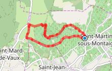 Saint Martin sous Montaigu SM1 : Balade verte de Château-Beau aux Orchidées