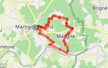 MARTIGNE-BRIAND : Circuit de Maligné