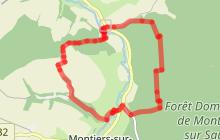 Montiers-sur-Saulx - Boucle de la Forêt Domaniale (court)