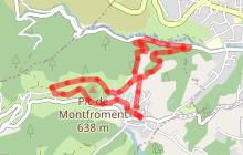 Pic de Montfroment et Bois Joli - PR 13