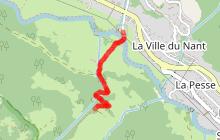 Itinéraire raquettes : Sur Bayard par la cascade