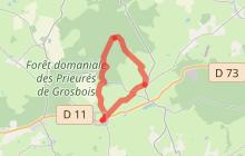 Gipcy - Chemin du Bocage et de la forêt