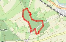 Circuit de l'Arbre Éléphant