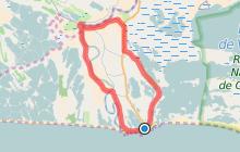 Un tour autour des Saintes-Maries-de-la-mer