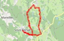 Circuit Pédestre N°10 Sous Parsat - Champeaubert