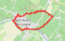 SAINT AUBIN DE LUIGNE : Le Grand Beauvais