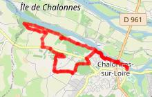 CHALONNES SUR LOIRE : Coteau Saint-Vincent
