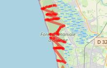Accès à pied aux plages d'Olonne sur Mer par la forêt