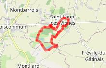 Les petits bois de Saint-Loup