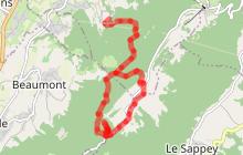 Les Pitons par l'alpage de Chavanne