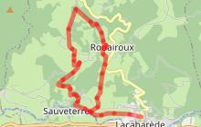 Le sentier des Hautes Futaies