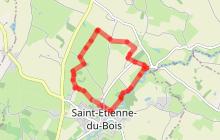 SAINT-ETIENNE-DU-BOIS - Le sentier de la Vieille Croix