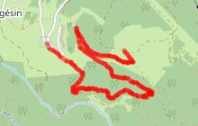 Sentier Botanique de Pralioud