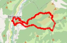 Circuit Trail 3 - La Boucle de Nifflon
