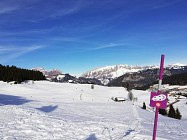 Le Mont-Lachat par les Reys n°10