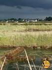 GR Rhuys-Vilaine (Officiel): étape 22 Sarzeau Truscat à St Armel Le Pusmen