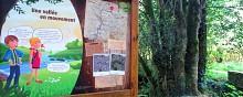 Noyal-Muzillac: Boucle botanique de La Michochêne (officiel)