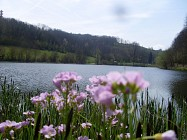 Circuit VTT n° 1 - Les étangs d'Oyeu