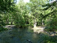 De la Ripisylve au canal